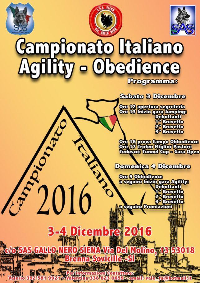 locandina-agility-2016